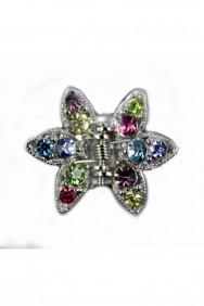 C121 PROM JEWELRY-HAIR CLIP (set of 2)