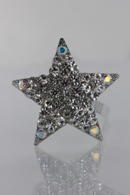 PM26 Actue Star Pin (set of 4)