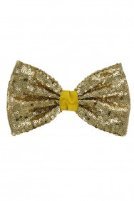 C777-L  LARGE SPARKLING HAIR RIBBON CLIP